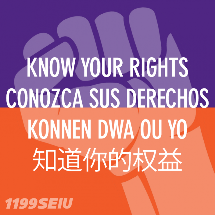 Know_Your_Rights_SM.png
